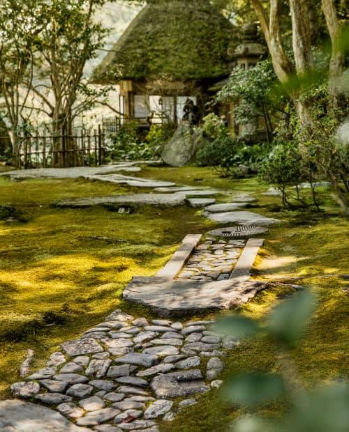 Feel Ozu / Mesmerizing Walking Tours